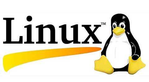 提升Linux以增强开源软件的影响力